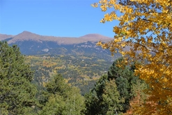 Colorado Hunting Ranches for Sale