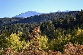 Ranches For Sale in Woodland Park, Colorado